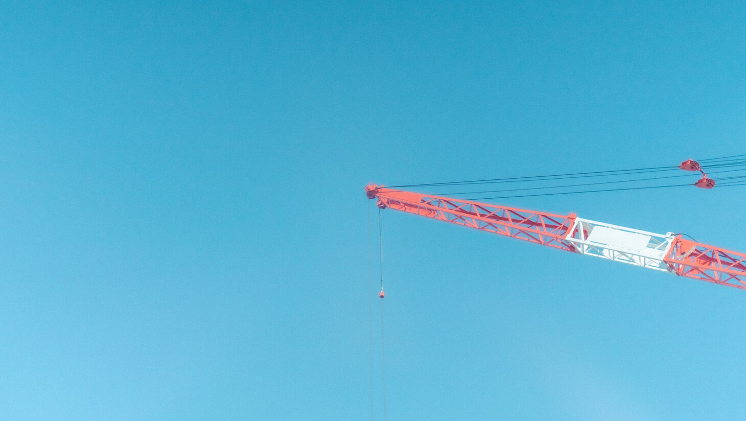 Red crane under blue sky scopio 72abf304 0e41 4dc2 8338 0408c998bc3f